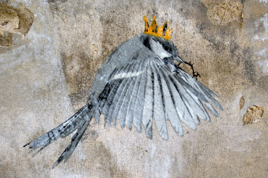 Artwork by the artist seiLeise: A bird with a crown holds a small, thorny branch in its beak.