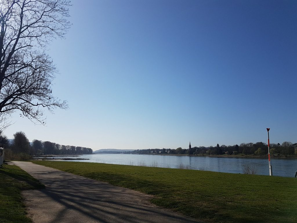 Panoramic view of the Rhine from one of the banks.